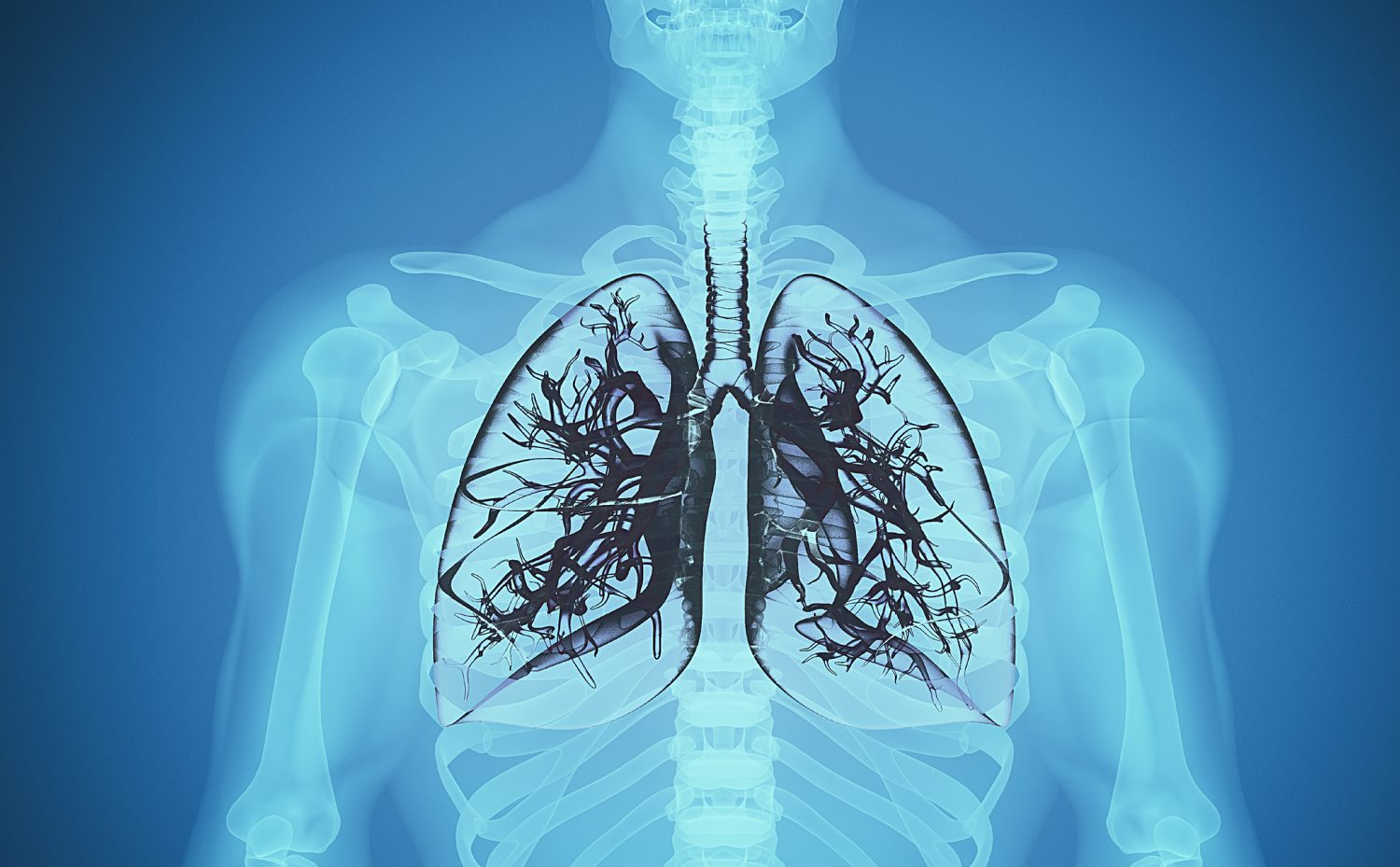Black Lung review: Diagnosis missed by doctors