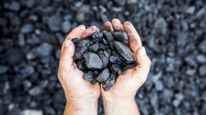 coal council welcomes the election of the morrison government
